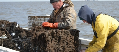 Fishermen remove crab traps from the water in New Jersey.