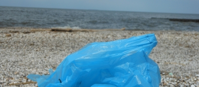 Plastic bag on Lake Erie shoreline.