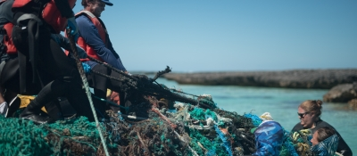 Marine debris removal team pulls a derelict net mass out from the waters of Midway Atoll.