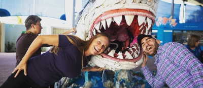 People with their head in a fake shark mouth at an outreach event.