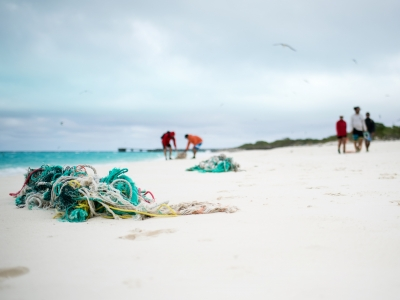The Marine Debris team removing derelict fishing nets from North Beach, Sand Island, Midway Atoll.