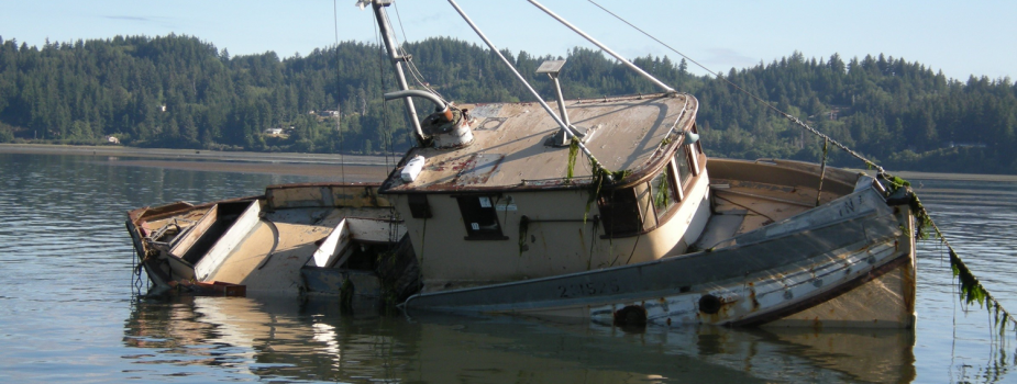 Derelict boat sinking in a lake.