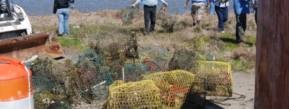 Volunteers picking up derelict crab pots.