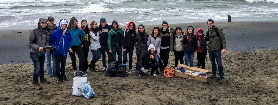 A group of students with monitoring equipment on a beach.