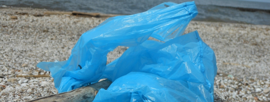 A blue plastic bag sits on the Lake Erie shoreline.