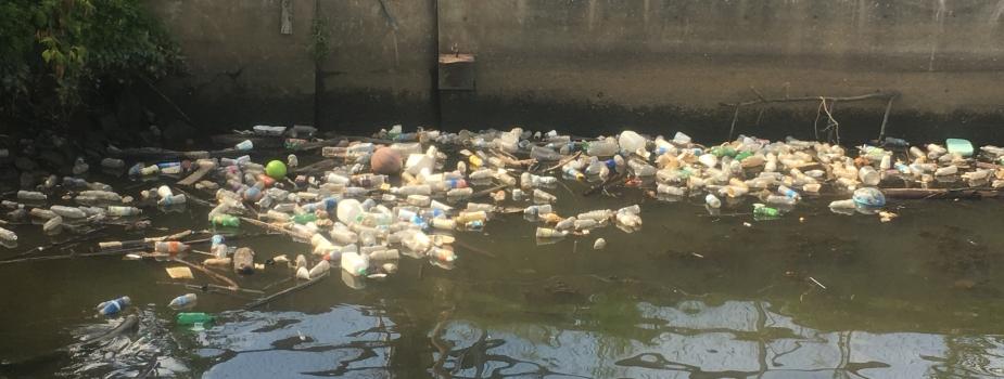 Plastic bottles floating in a river.