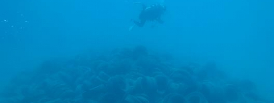 A SCUBA diver swims over a very large pile of 2,482 tires all resting on the seafloor.