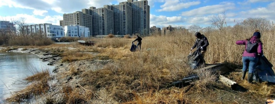 Three people walk along a shoreline that is covered with brown grass. They are collecting debris that floats on the water. Several large buildings can be seen in the background.