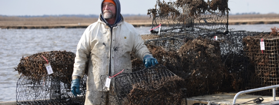 Man with crab pots.