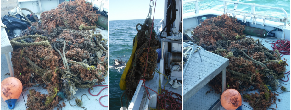 Photos of a derelict net on a boat.