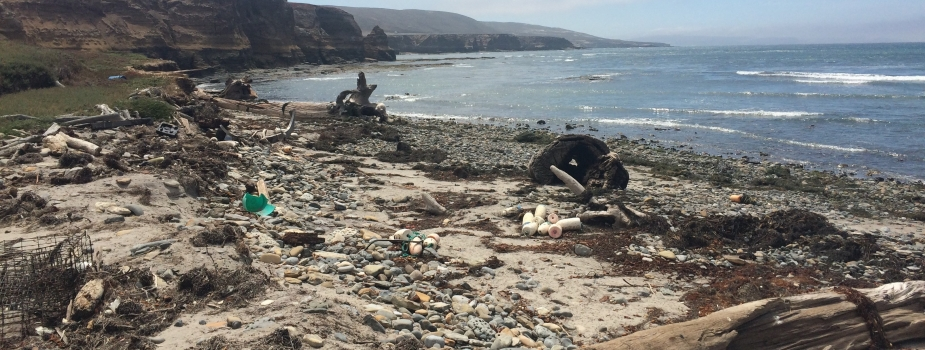 Debris on Tecelote Beach, Santa Rosa Island.