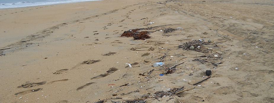 Marine debris on a beach in California.