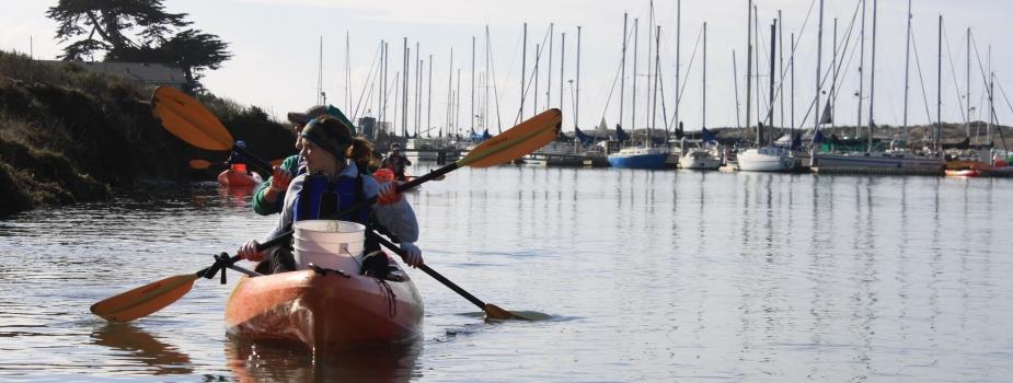 Volunteers kayaking nearshore to clean up debris.