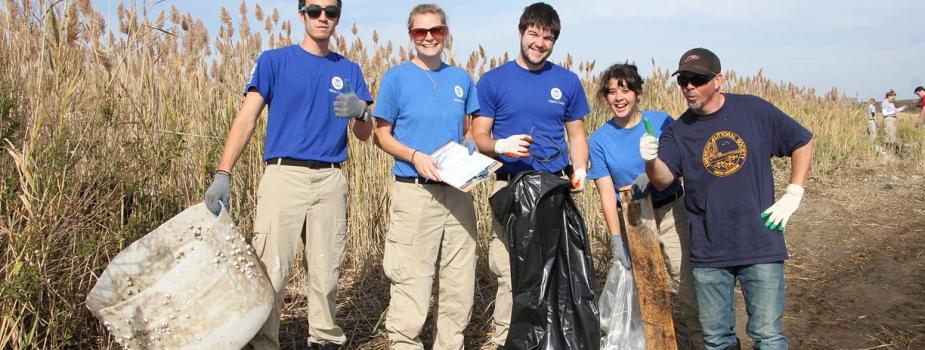 Volunteers participate in a cleanup.