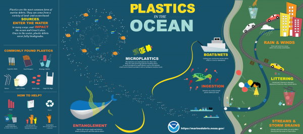 Inforgraphic on plastics in the ocean, where they come from, and their impacts.