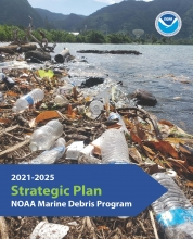 Cover of the 2021-2025 Strategic Plan.