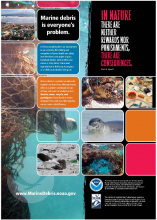Impacts to Hawaiian Islands: Poster