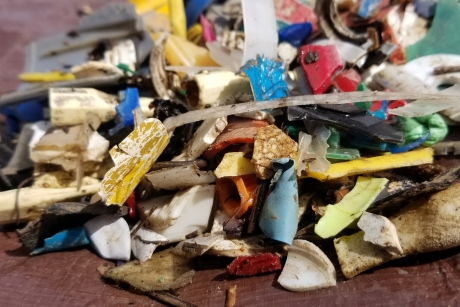 A pile of assorted shapes and sizes of plastic fragments.