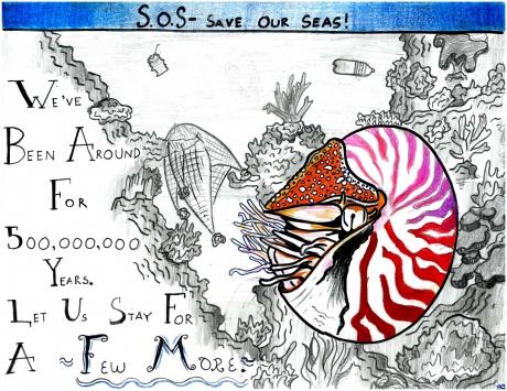 Artwork by Taelyn B. (Grade 7, Idaho)