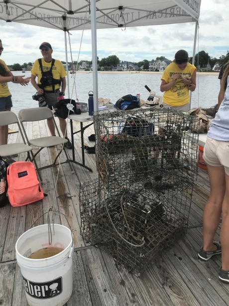 Three people stand on a dock under a pop up tent looking at a pile of crab traps.