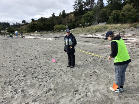Two people laying a transect.