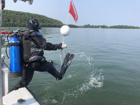Diver jumping into water.