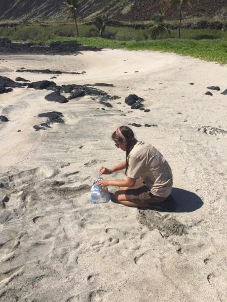 A person sampling on a beach.