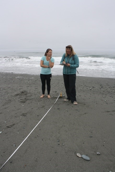 Two people recording data on a data sheet on a beach.
