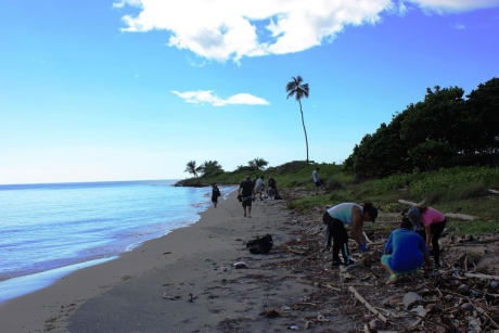 Volunteers removing debris at Ballenas Beach, PR