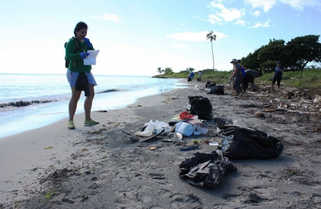 Volunteers sorting,counting, and removing debris at Ballenas Beach, PR