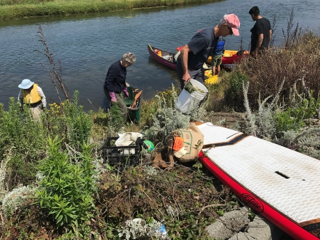 Volunteers clean up debris on the shore of the Pajaro River.