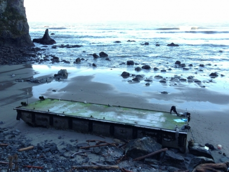 A 66-ft floating dock that was dislodged from the Port of Misawa in Japan during the tsunami and washed up on the Olympic Coast of Washington near Mosquito Creek in December 2012.