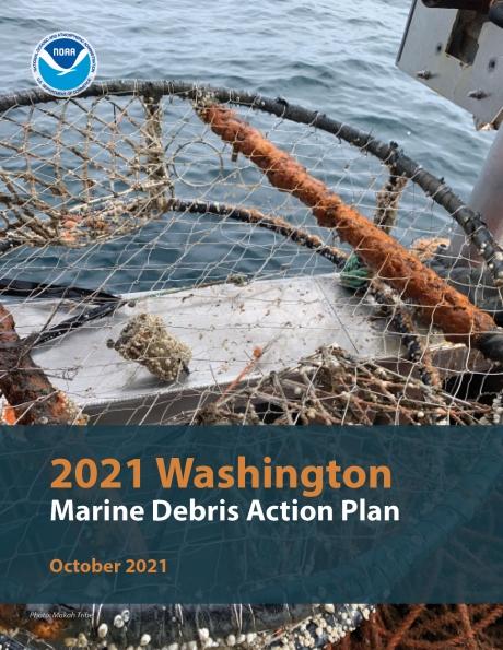 Washington Action Plan cover.