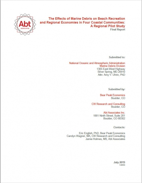 Cover of Report.