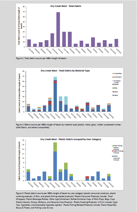 Screen shot of the first page of the Accumulation Figures - PDF Example 1 document.