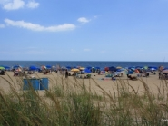 May people and umbrellas cover a beach located in Delaware.