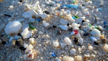 Fragments of plastic on a beach.