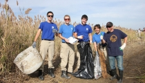 Volunteers participate in a cleanup.