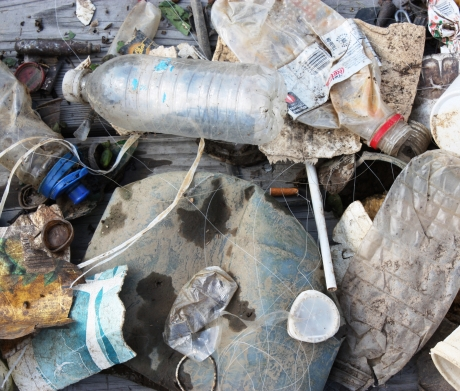 Plastic bottles, fishing line, cigarette butts, and other assorted marine debris.