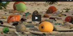 Marine debris on the beach
